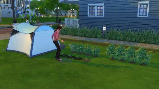 Ch5 tending garden