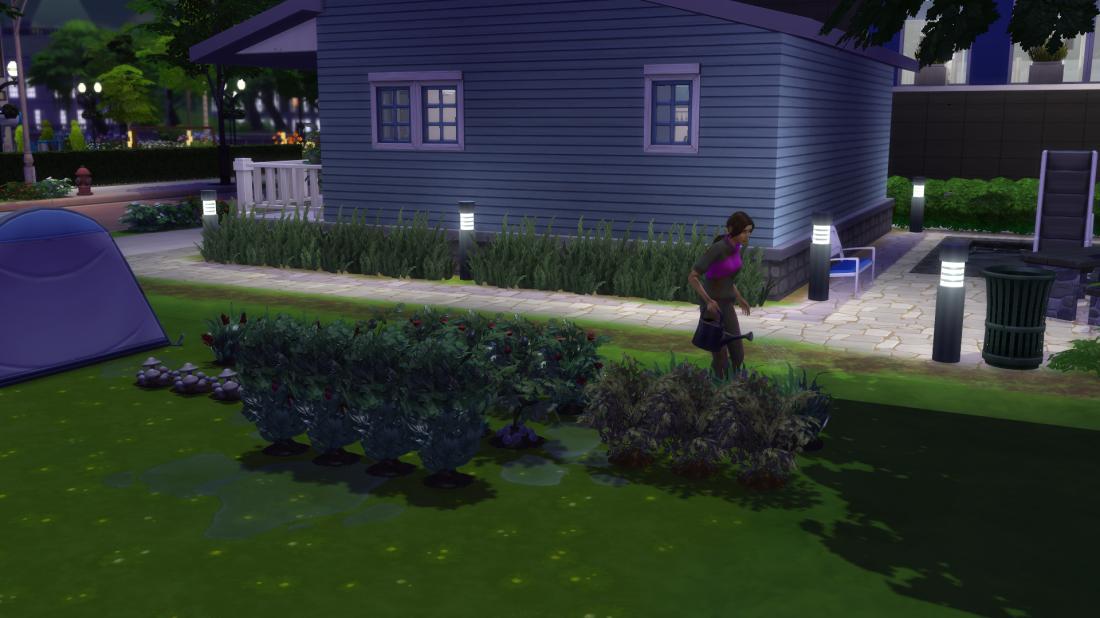 Ch9 tending garden